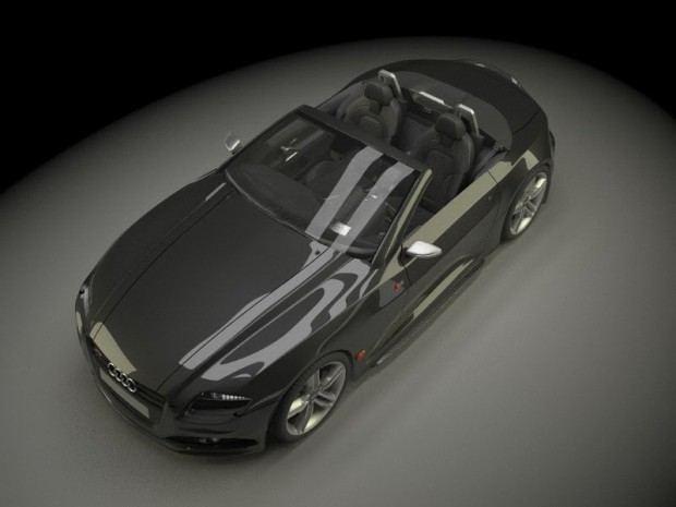 Audi-RS-Roadster-26[4]