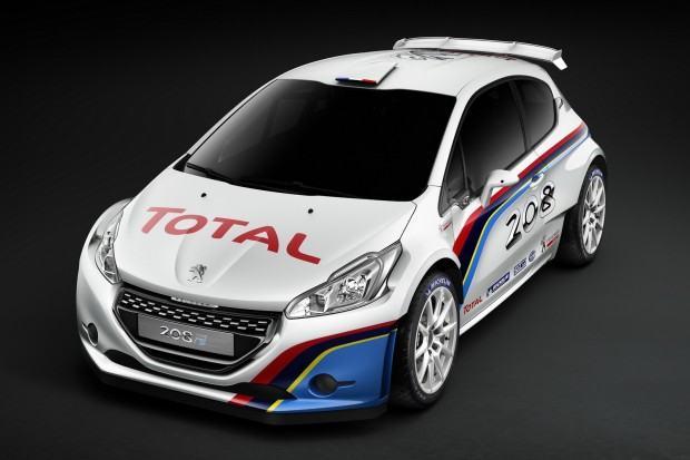 Peugeot-208-R5-5[5]