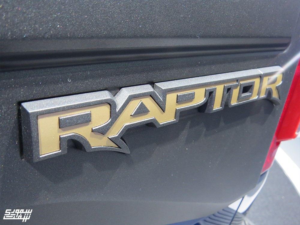 Raptor 10