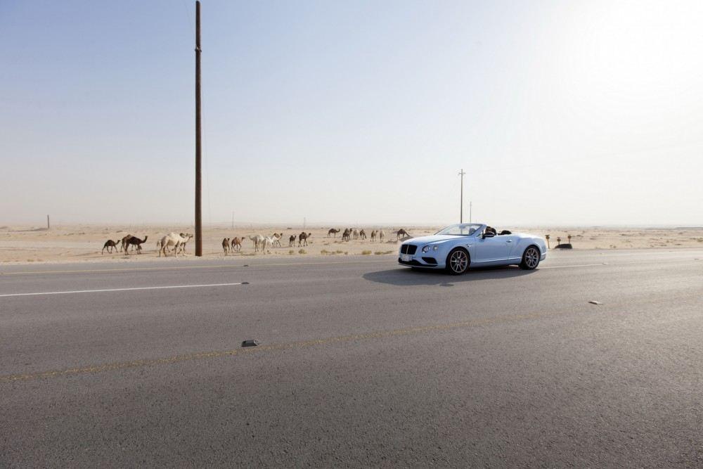Bentley-Continental-GT-V8-S-Convertible-races-train-1