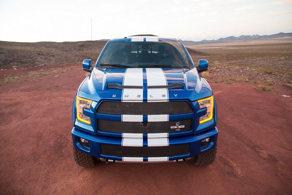 Shelby-4
